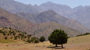 Toubkal in Summer