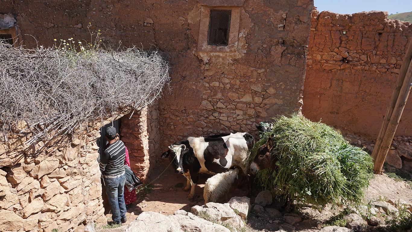 Agadir village