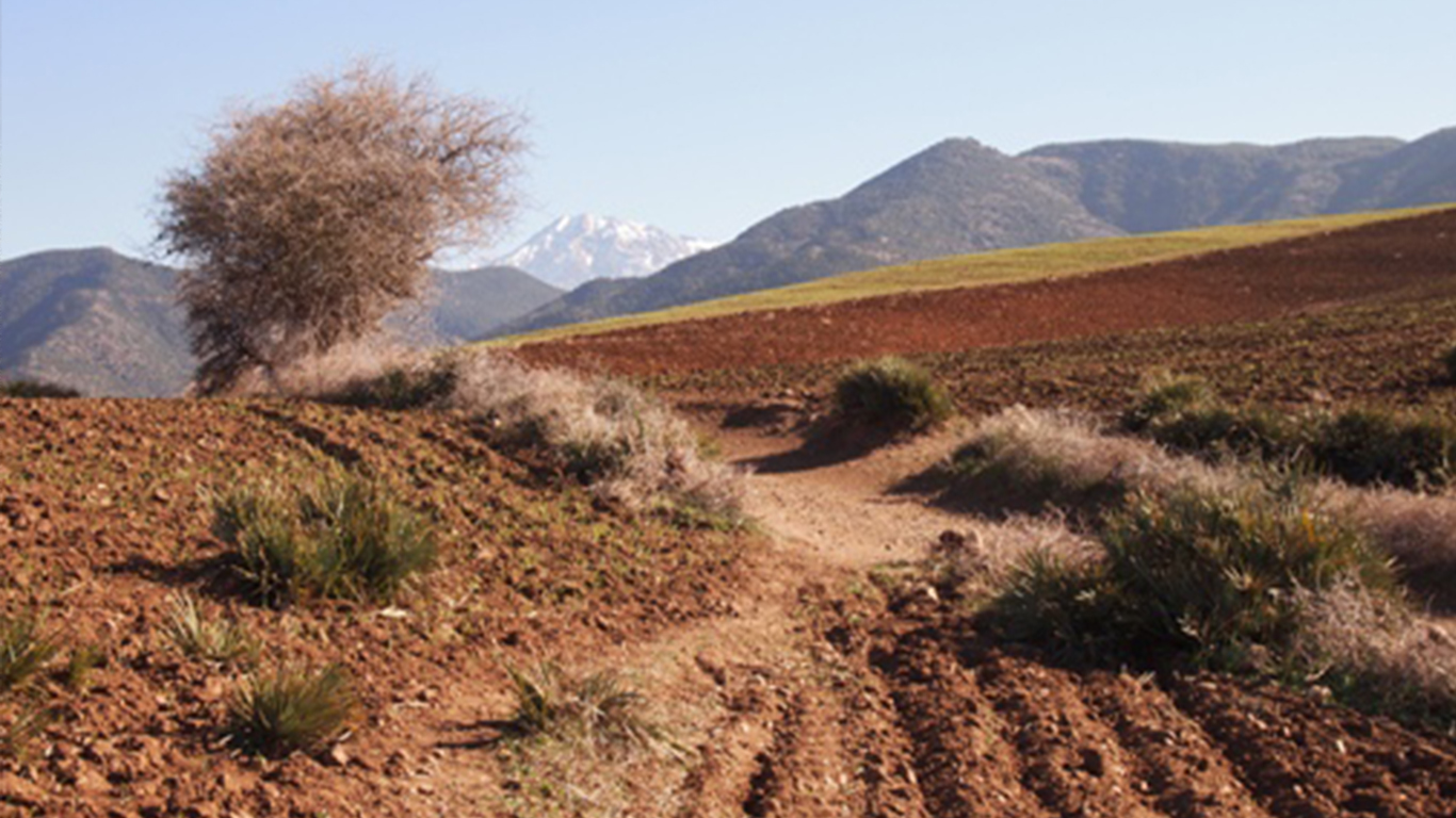 Mountain fields near Agadir